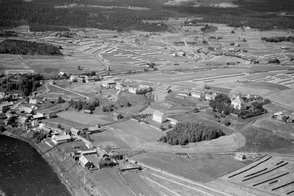 Tolga 1952